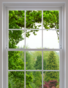 Traditional timber French Doors